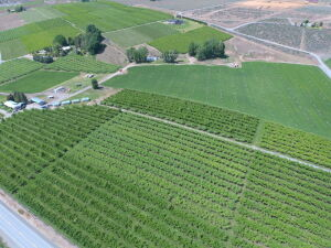 Elmo Cook Retirement Real Estate Auction in Conjuction w/Northwest First Realtors-Farm & Ranch
