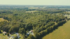 35.5 Acres± In Madison County