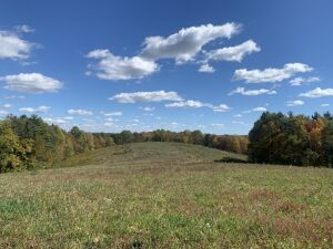 Monroe County Mostly Wooded Acreage- Excellent Wildlife Habitat