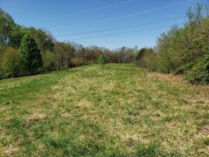 Approximately 60 Acres at Absolute Online Auction