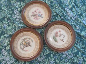 Set of 3 hand painted Lennex plates framed