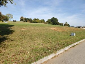.97 Acre Lot 133R (Lots 133/134 combined) on the 8th fairway of Patriot Hills Golf Course -- Please See Documents for Survey, Restrictions -- NO HOA FEES!