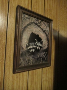 FRAMED RACCOON PICTURE-DR