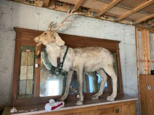 Huge Mohair Antique Reindeer