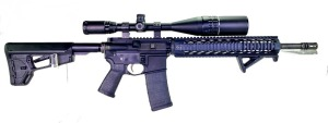 Palmetto State Armory PA-15 Rifle