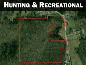 33.9 ACRE WOODED LAND
