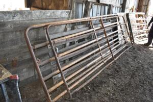 (2) 12ft Sioux farm gates