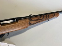 Ruger 10/22 .22LR with Eagle Stock - 3