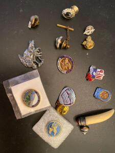 Collection of lapel pins