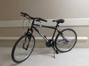 Adult Male's Bike